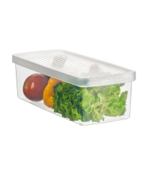 PLASTIC BOX F/ VEGERABLES AND SALAD - S